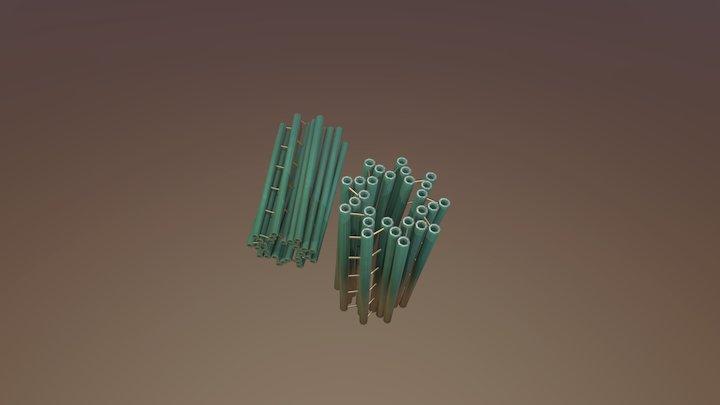 Centriole 3D Model