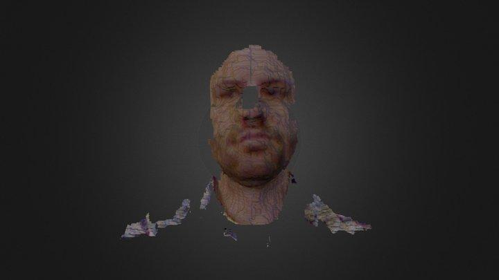 My scan 3D Model