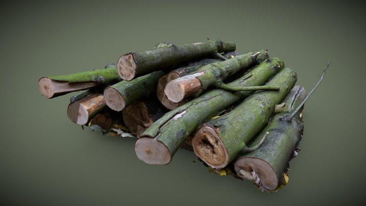 Wood Logs Scan 3D Model