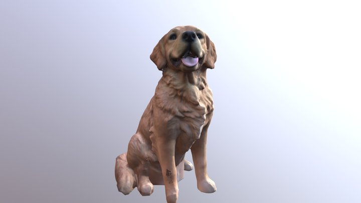 Golden Retriever (Sitting) 3D Model