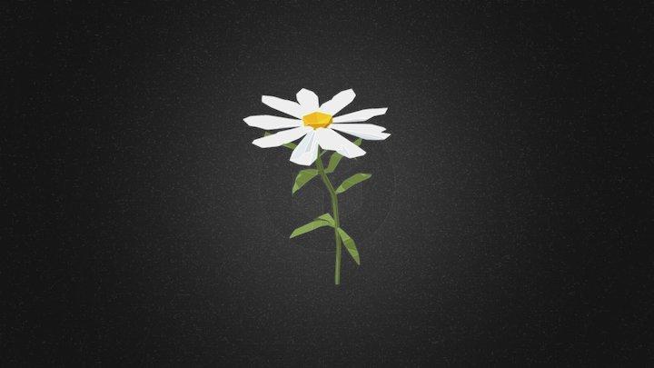 Margarita flower 3D Model