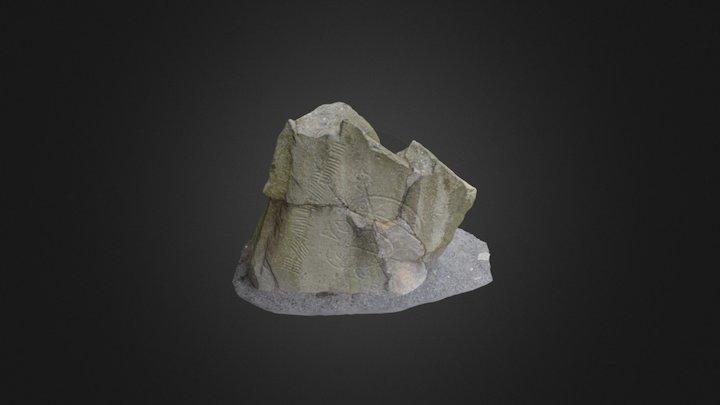 Brandsbutt Stone 3D Model