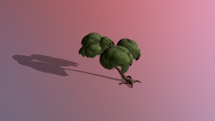Young linden Tree 3D Model