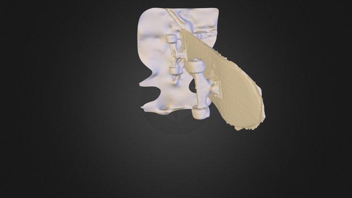Capture_2013_08_04_10_13_46~.obj 3D Model