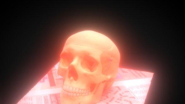 Plasticskull 3D Model