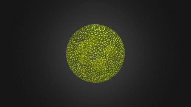 Volvox Зеленая водоросль Chlorophyta 3D Model