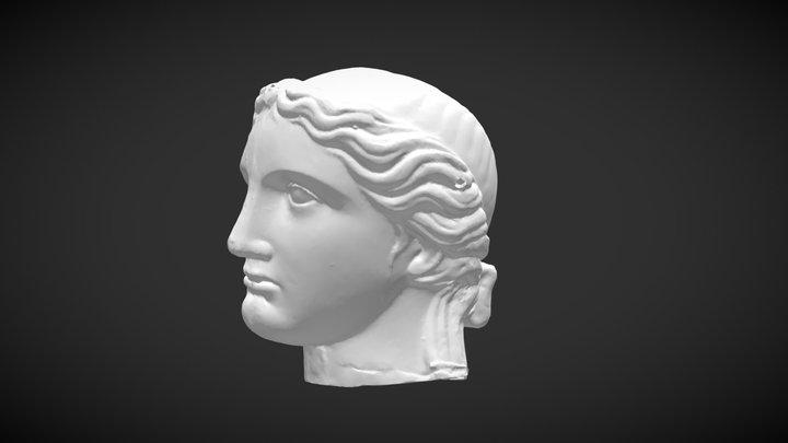 Tête test 3D Model