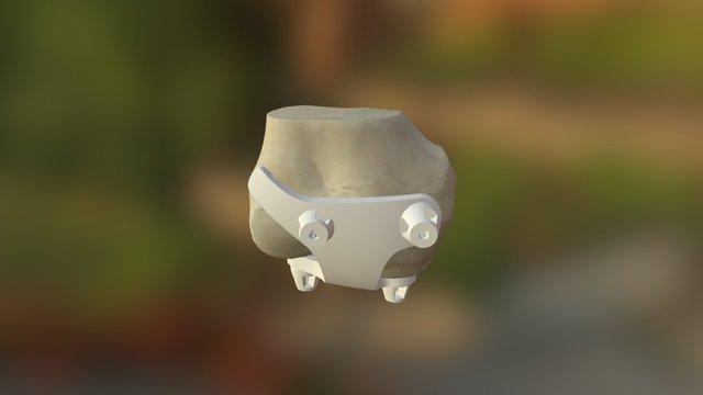 Psi 3D Model