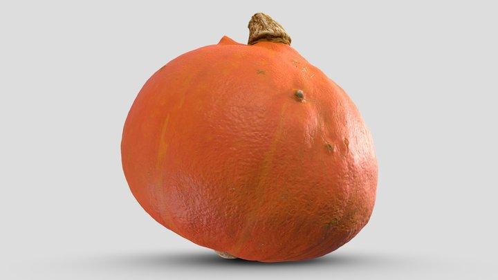 Pumpkin Scan 02   Retopologized 3D Model