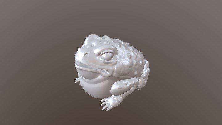 Frogtest 3D Model