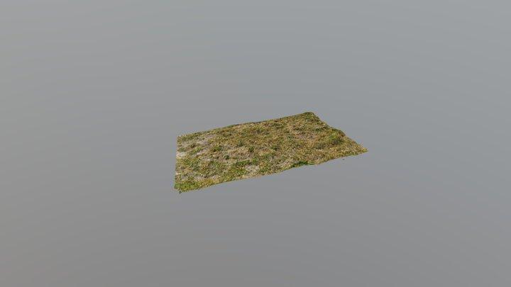 Grassy Ground - HD 3D Model
