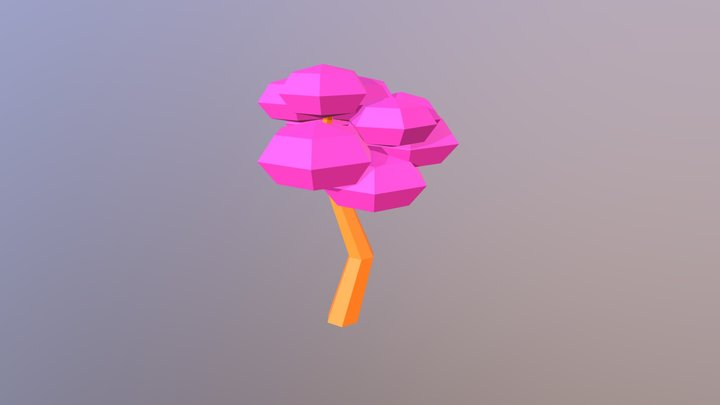 Sapucaia 3D Model