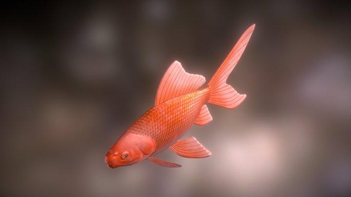 Comet goldfish 3D Model