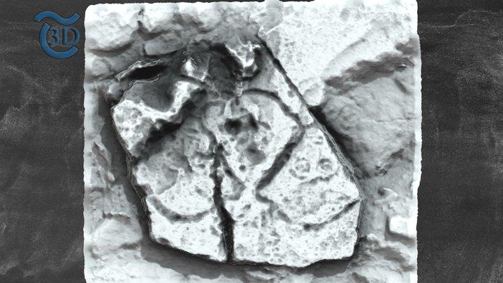 Cahir Castle - Medieval carving.  Unknown Origin 3D Model