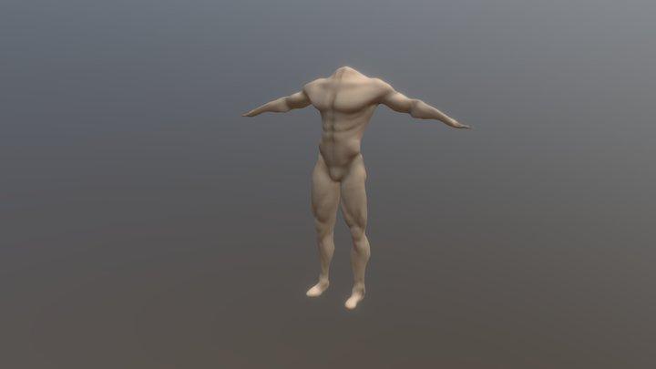 Anatomy 1 3D Model