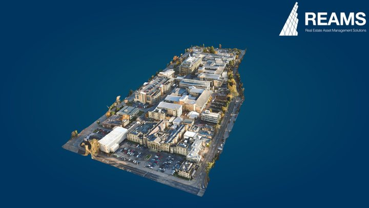Royal Berkshire Hospital 2020 - 3D Mesh 3D Model