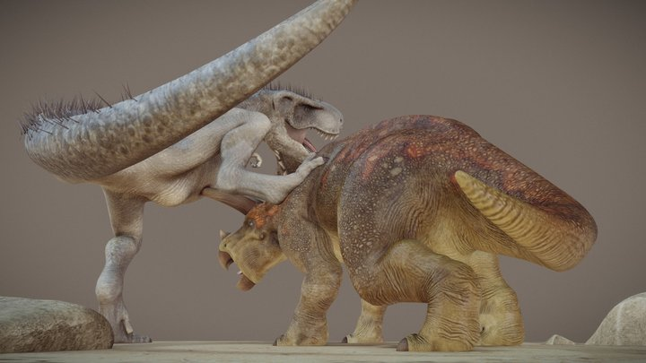 Triceratops Horridus vs Tyranosaurus Rex Diorama 3D Model