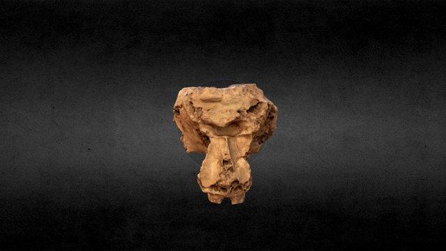 Elephas Antiquus 3D Model