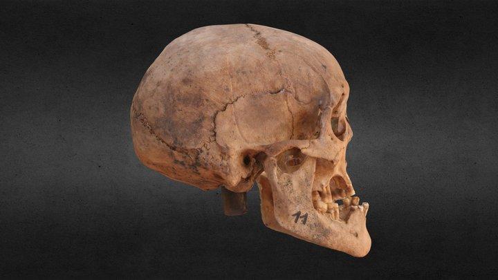 Burial 11 3D Model