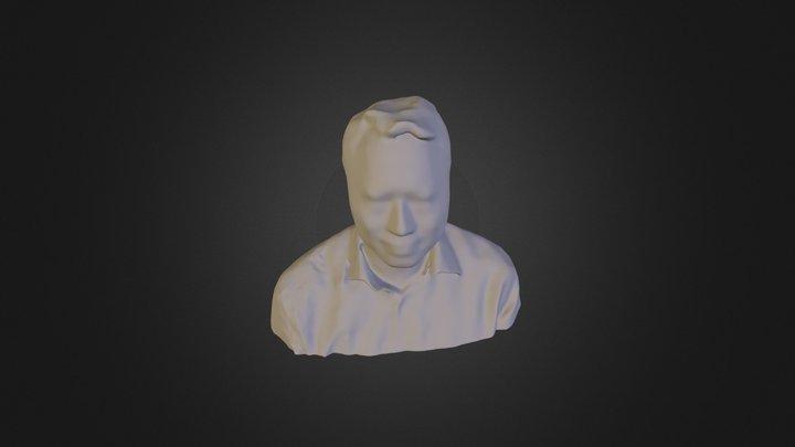Model Mesh 3D Model