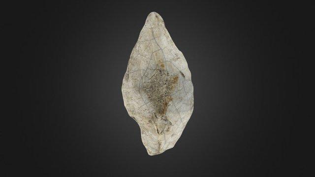 Burned Neolithic flint arrowhead 3D Model