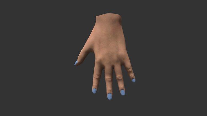 High Poly Female Hand 3D Model