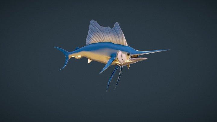 Sailfish 3D Model