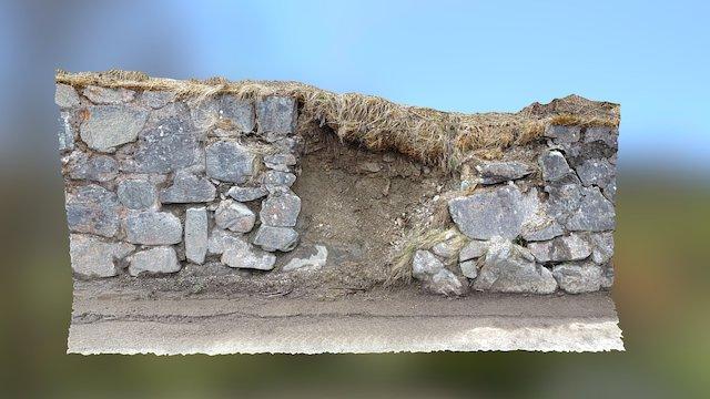 Mauerschaden 3D Model