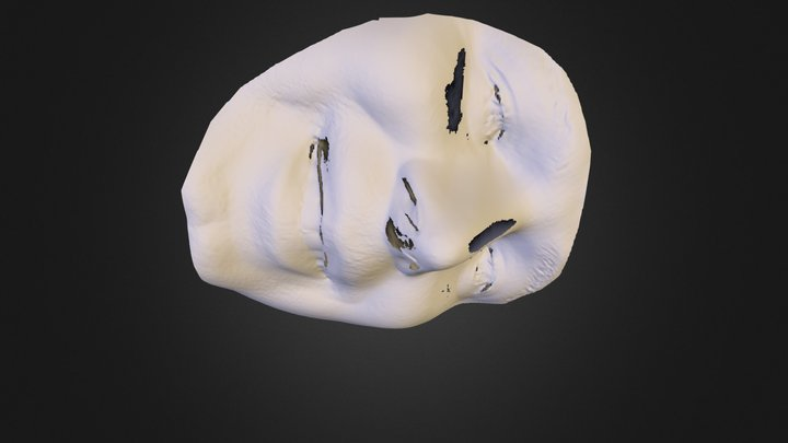 100363 3D Model