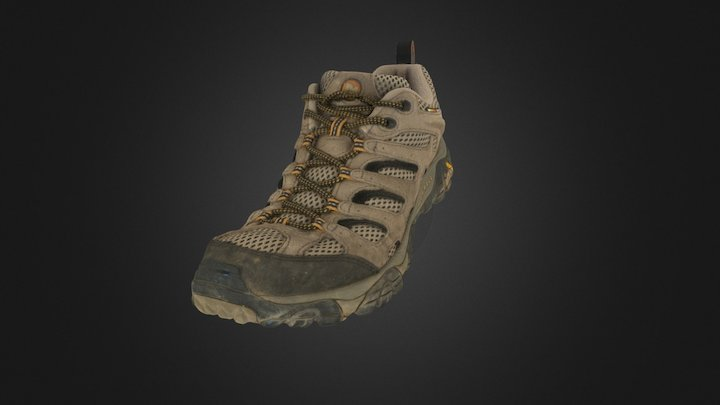 Hiking Shoe - High Res 3D Model