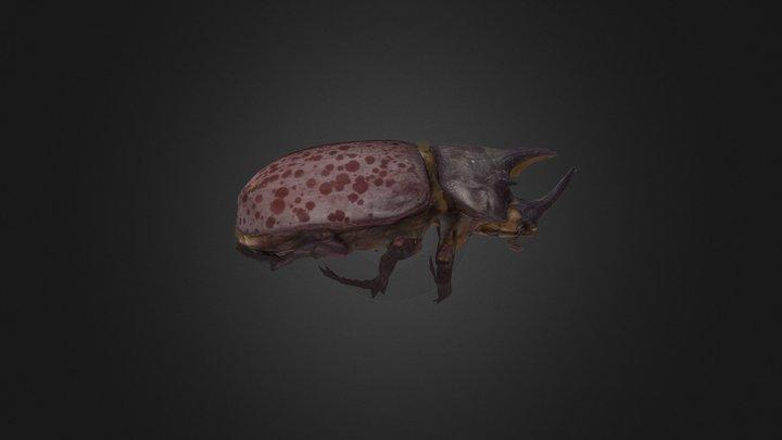Eastern Hercules Beetle 3D Model
