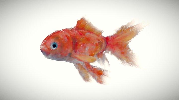 Water Fish 3D Model