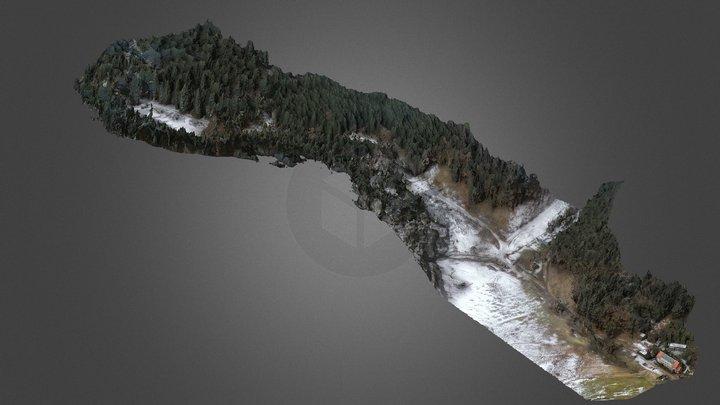 Lütsche Dorf 3D Model