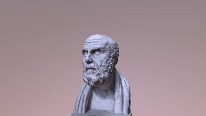 Head Bust [3D Scan] 3D Model