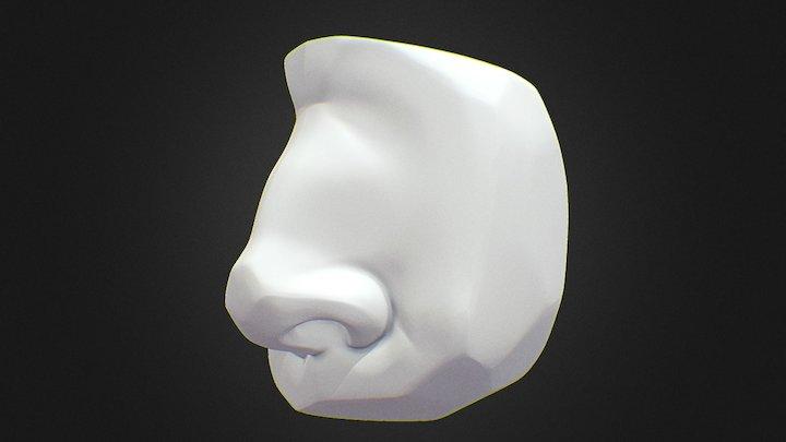 Nose Planes Sculpt 3D Model