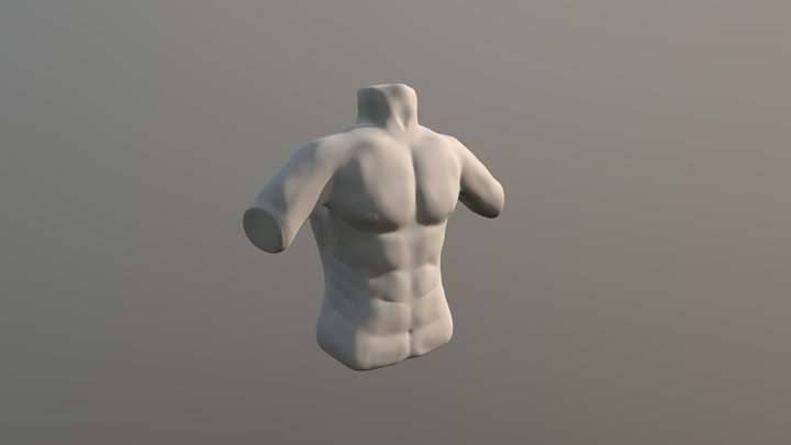 sculptjanuary19 - day 03 - body: chest 3D Model