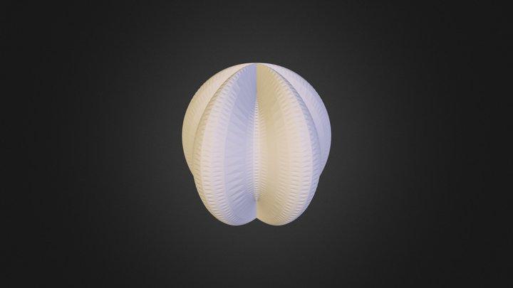 S1 3D Model