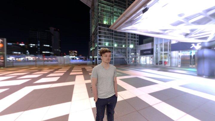 Pieter Levels in 3D 3D Model