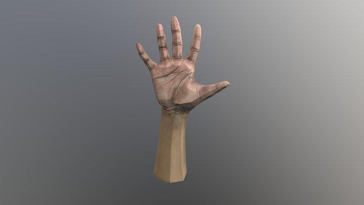 A03 Lowpoly Hand Model 3D Model
