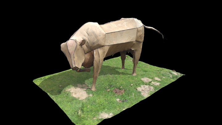 Bull (Sally Price) 3D Model