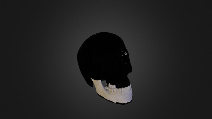 To Make or not To Make 3D Model