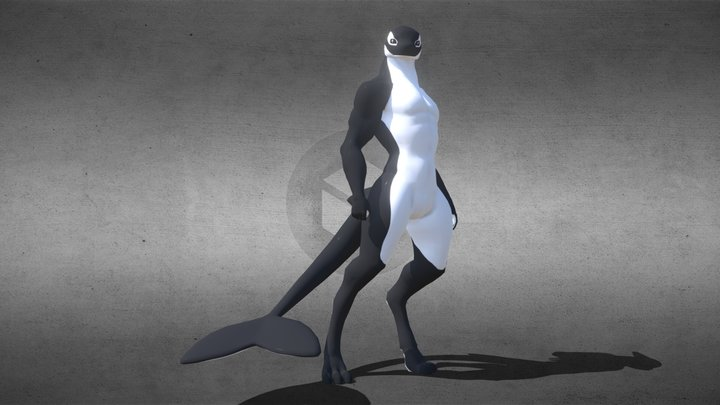 Orca (updated version) 3D Model