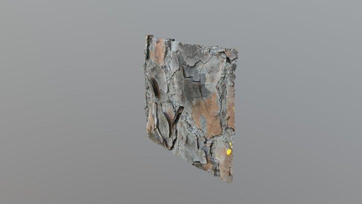 Longleaf pine bark drying 07/05/2018 3D Model