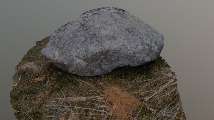 Rock - MeshRoom 3D Model