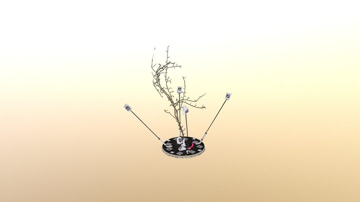 Branch of a Hawthorn tree in Wytham Woods, UK 3D Model