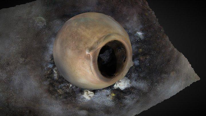 Maya Vessel from Cenote in Yucatán, Mexico 3D Model