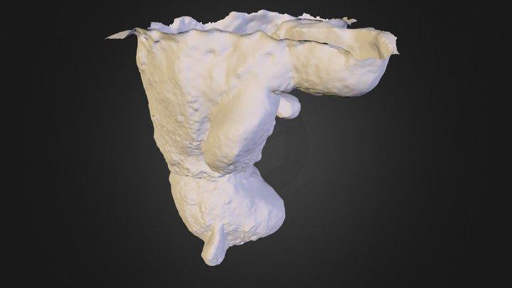 snowy 3D Model