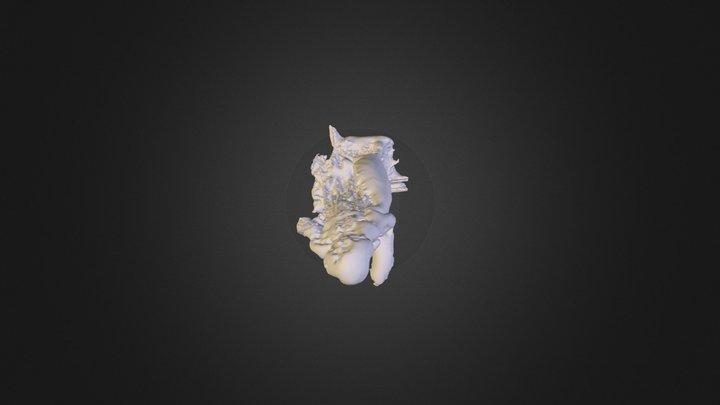san giacomo statua 1 meshlab mesh 3D Model