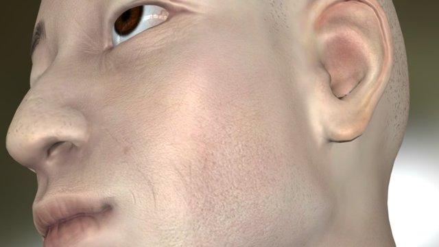 Zbrush asian head 3D Model