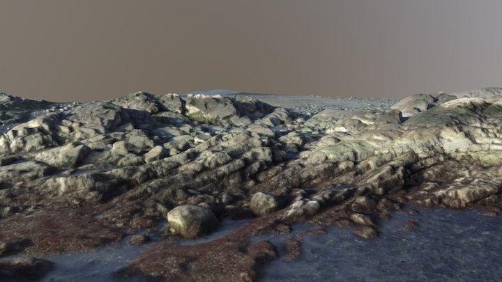 Intertidal shore @ Marblehead MA 3D Model